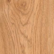 Дуб Кордоба (NL) 9155