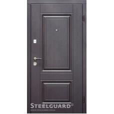 Двери Steelguard DO-30
