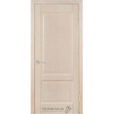 Двери Терминус Модель 04 глухая