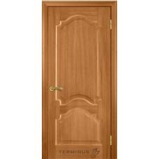 Двери Терминус Модель 08 глухая